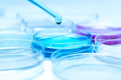 Лабораторная диагностика (анализы)
